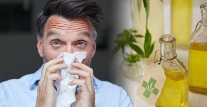 Hay fever: This cannabis-based supplement with 'anti-inflammatory properties' could help