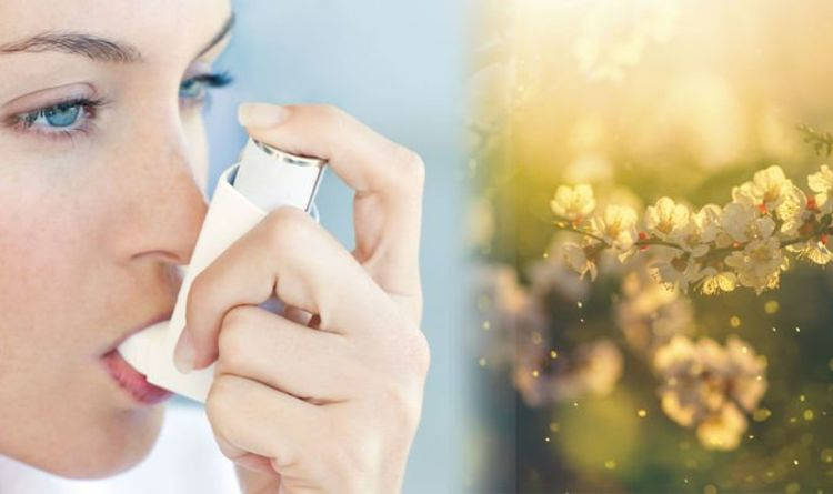 Hay fever hell: Pollen bomb hits TODAY – millions affected by asthma attacks
