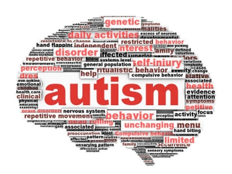 Autism largely caused by genetics, not environment: Study