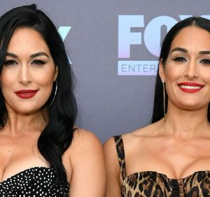 Pregnant Nikki, Brie Bella Pose Nude in Joint Maternity Photo Shoot