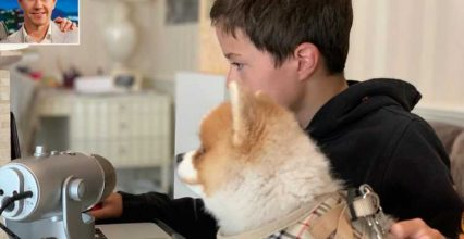 Mark Wahlberg Says His 'Boys Are Back in School' as Son Brendan, 11, Begins Remote Learning