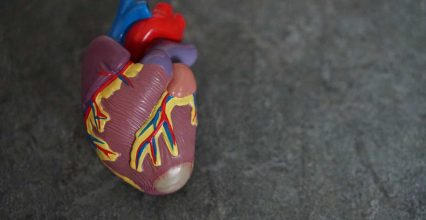 Hope for children with rare heart condition: Novel stem cell therapy to save the day