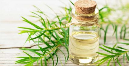Ways To Use Tea Tree Oil You've Never Thought Of