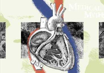 9 myths about cholesterol