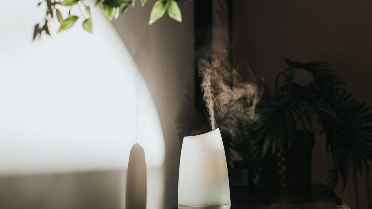 Air purifier vs essential oil diffuser: What's the difference?